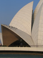 050105160236_lotus_temple_and_the_pigeons