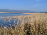 041203014134_lake_near_dhikala