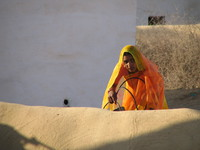 041208021348_yellow_lady_at_bikaner_desert