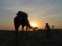041208034604_sunset_camel_and_the_trainer
