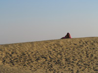 041212031636_gril_in_the_sand