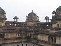 050103113904_roof_of_jahangir_mahal_is_full_of_vultures