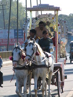 041206005636_horse_cart_in_haridwar