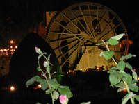 002_water_wheel_from_the_park