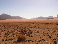 008_desert_is_empty