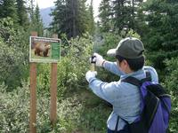 07170052_attack_by_bear_sign