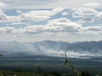 07250016_forest_fire