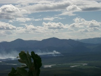 07250019_forest_fire_not_hot_spring