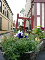 06150115_flowers_and_town