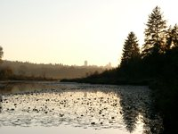 10140024_sunset_burnaby