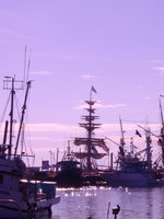 08080024_purple_tall_ships
