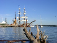 08080039_pretty_tall_ship