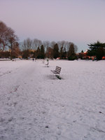 01030050_benches_in_snow