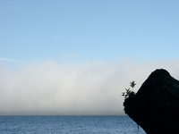 06260032_fogs_of_thrasher_cove