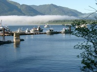 06270028_fogs_above_port_renfrew