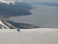 11050076_kitty_on_glacier_overlooking_ushuaia