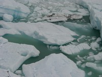 11160036_ice_in_glacier_lake