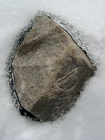 11190020_rock_in_ice
