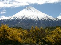 11270042_yellow_of_the_volcano