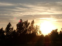 11290156_sunset_from_a_goodbye_bus