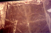 008_nazca_lines_-_tree_and_hands