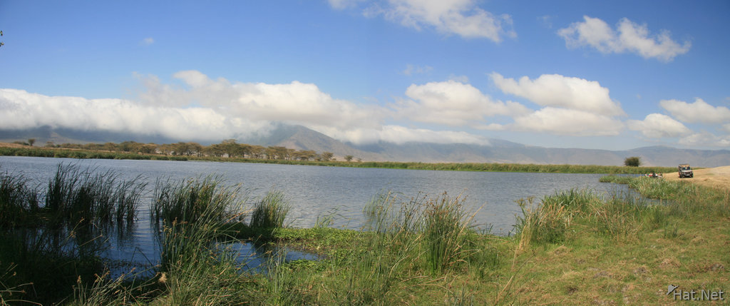 swamp of ngorongoro
