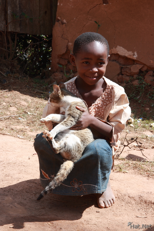 child with a cat