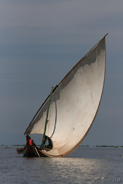 view--dhow boat on lake victoria
