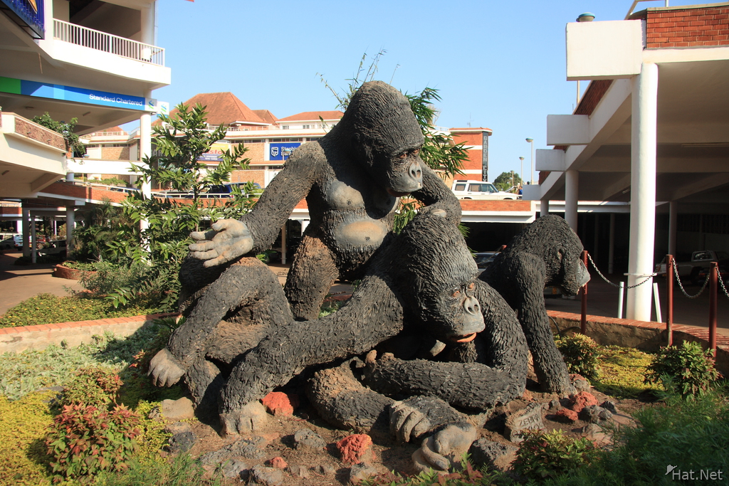 chimps island in shopping mall