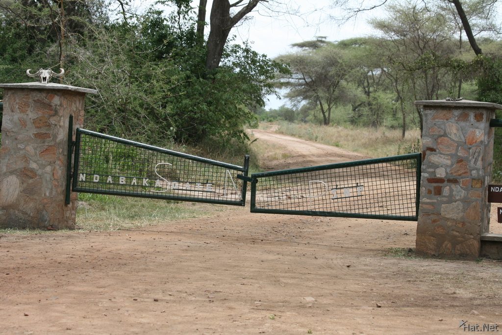 serengeti entrance