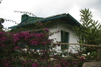 hotel--st benedict hostel resthouse Lushoto, East Africa, Tanzania, Africa
