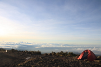 camp above the world Kilimanjaro, East Africa, Tanzania, Africa