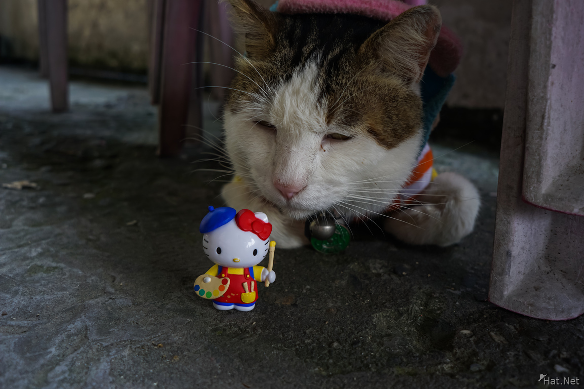 Hello Kitty in houtong cat village