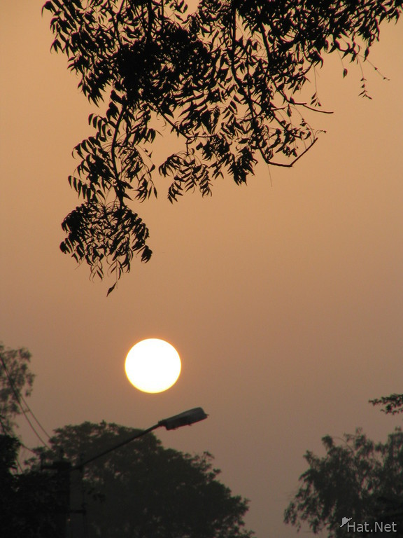 bharatpur sunset
