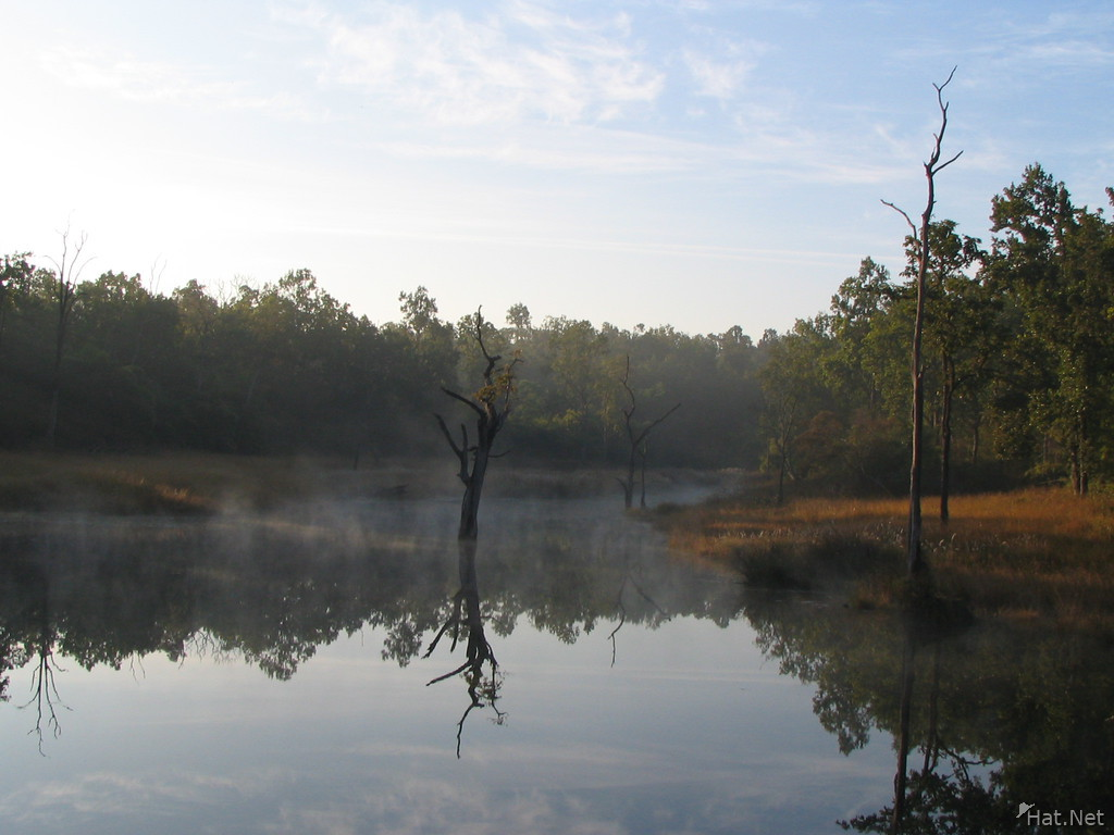 morning pond of kanha