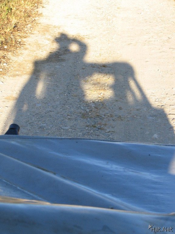 shadow of the jeep