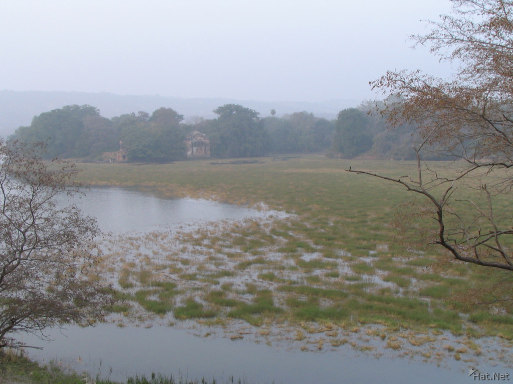 lake in ranthambhore
