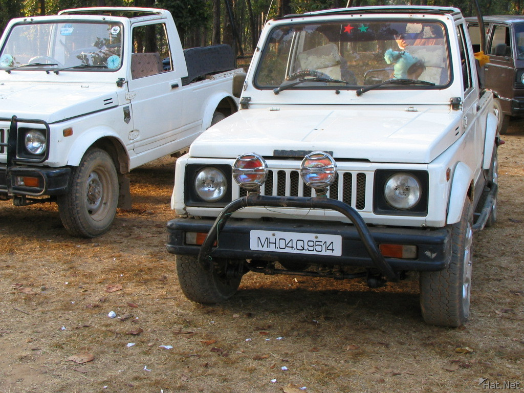 jeeps at kanha