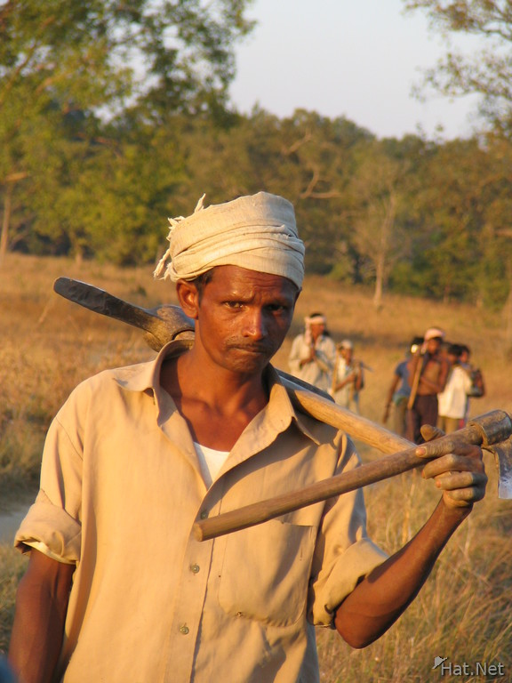 worker in kanha