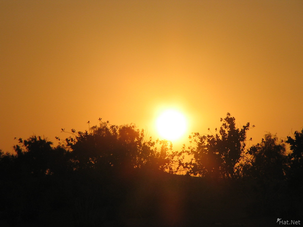 sunset of the thar desert