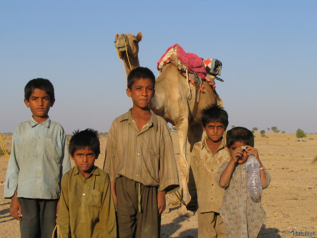 five childrens and the camel