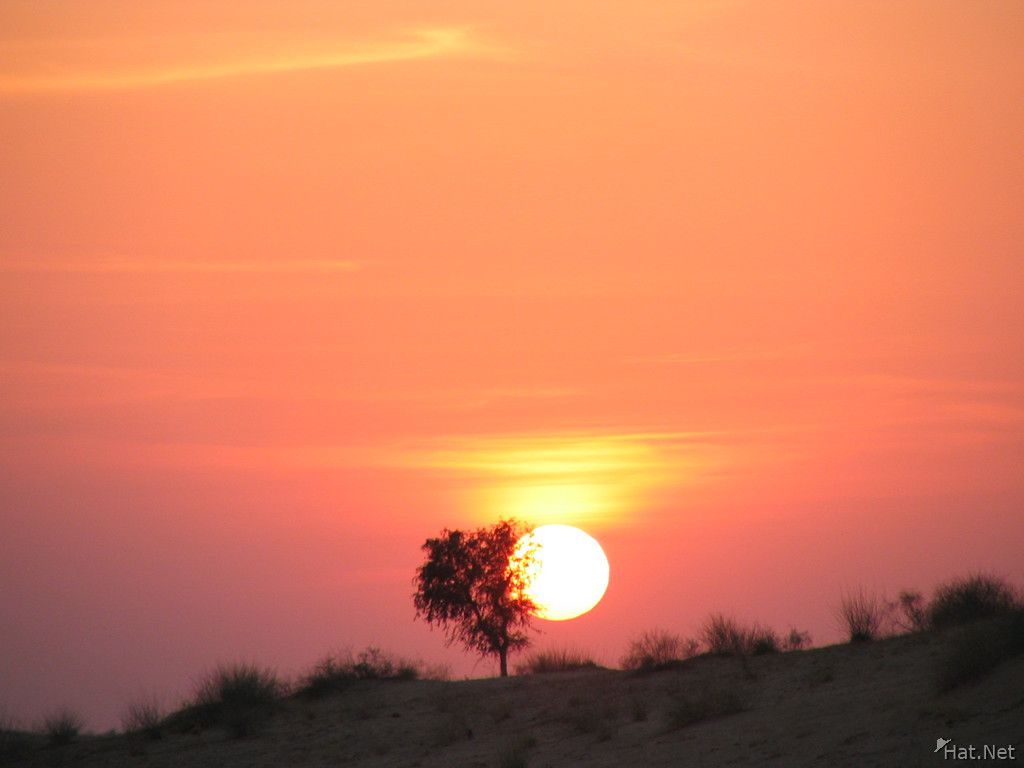 desert sunset in bikaner