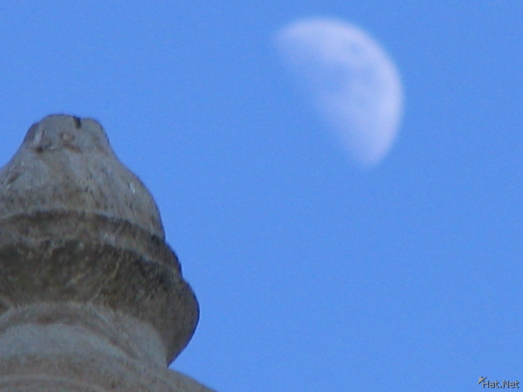 moon over the temple top