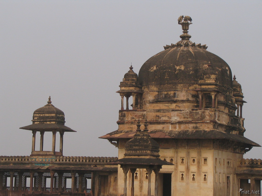two vultures on jahangir mahal