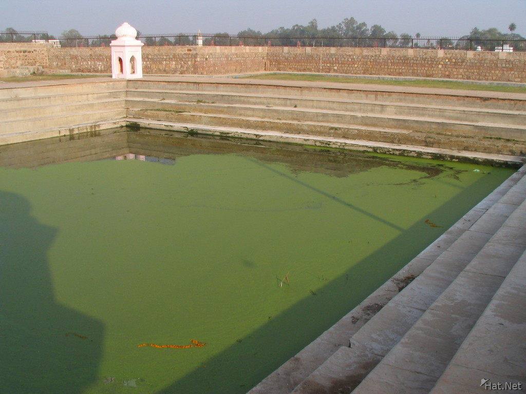 green water pool