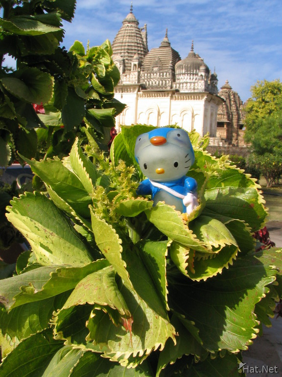 hello kitty and parvati temple