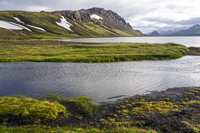 Alftavatn Lake green river South,  Iceland, Europe