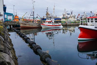 Reykjavik Old Harbour ships Old West Side,  Reykjavík,  Capital Region,  Iceland, Europe