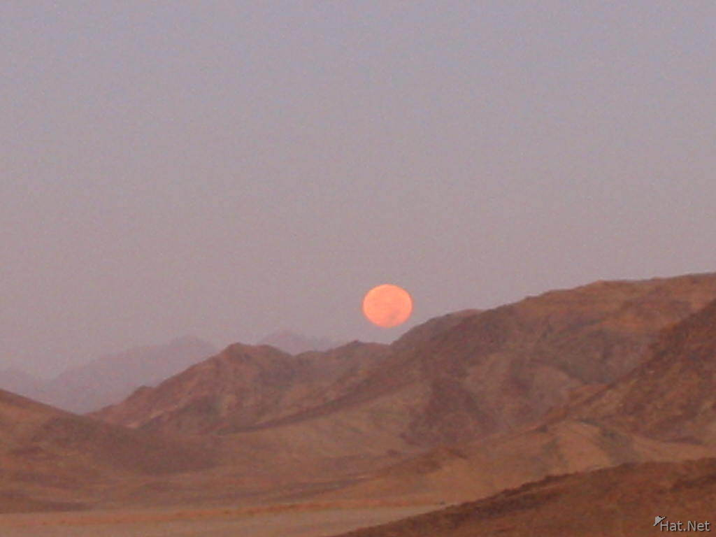 moonset of wadi rum