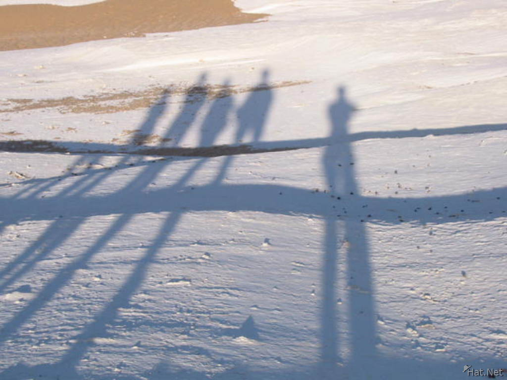 our shadows in the white desert